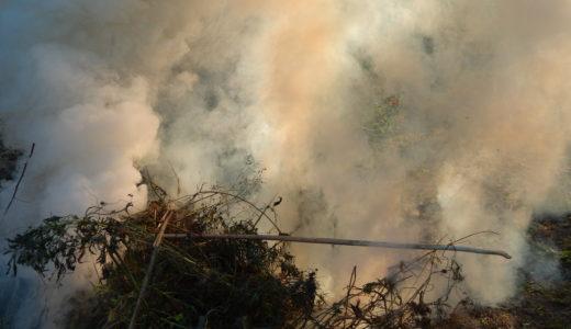 アメリカで自然災害のリスクが高い市場トップ10