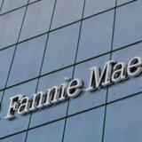 ファニーメイ(連邦住宅抵当公庫)とフレディーマック(連邦住宅金融抵当公庫)の行方ーインマン